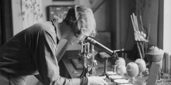 Mulheres na ciência e suas contribuições para o setor automotivo